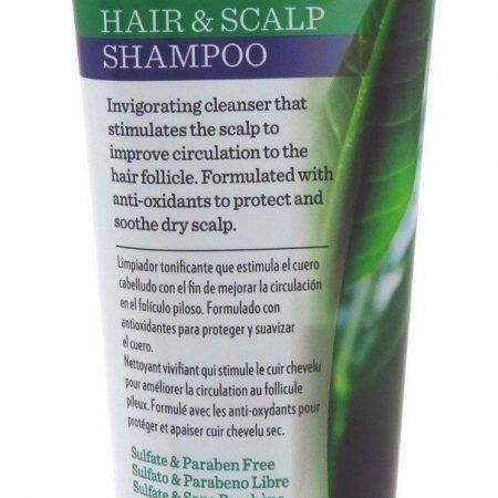 Hi Pro Pac Tea Tree & Mint Shampoo 237ml-0